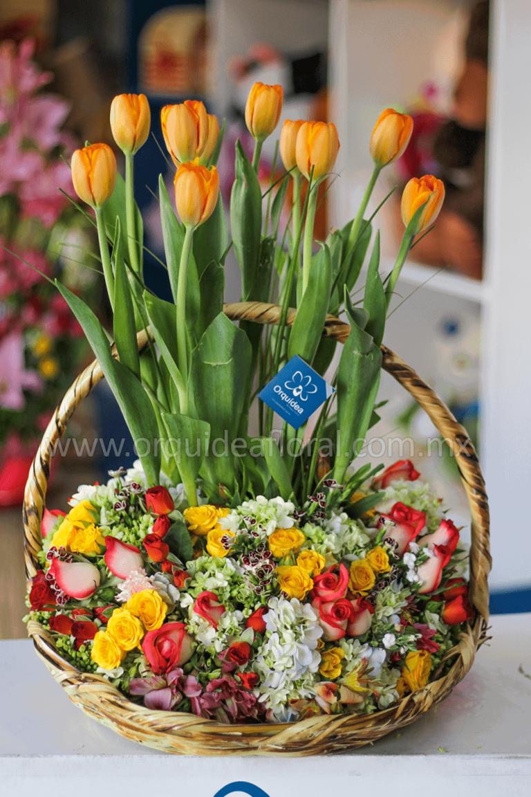 Florería en Cuernavaca   Orquídea Boutique Floral